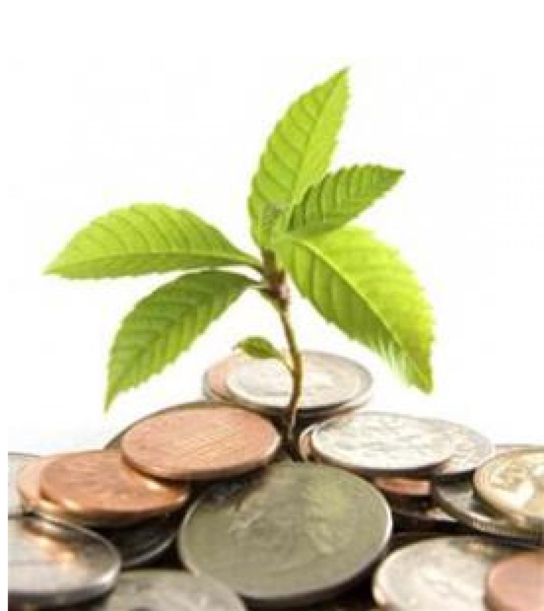 El Departament de Territori i Sostenibilitat convoca subvencions per al foment de l'ecoetiquetatge i l'ecodisseny