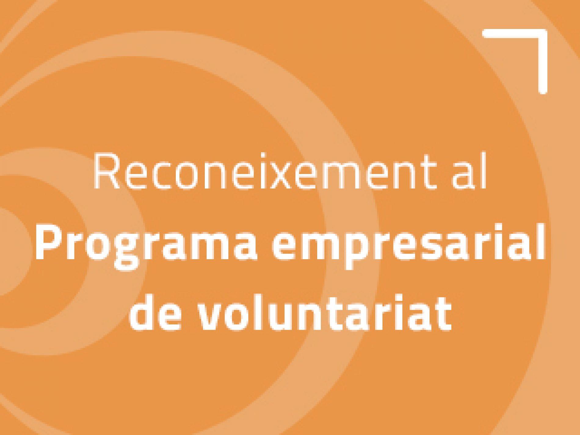 5 de desembre: Dia internacional del voluntariat. Bones pràctiques en voluntariat d'empresa