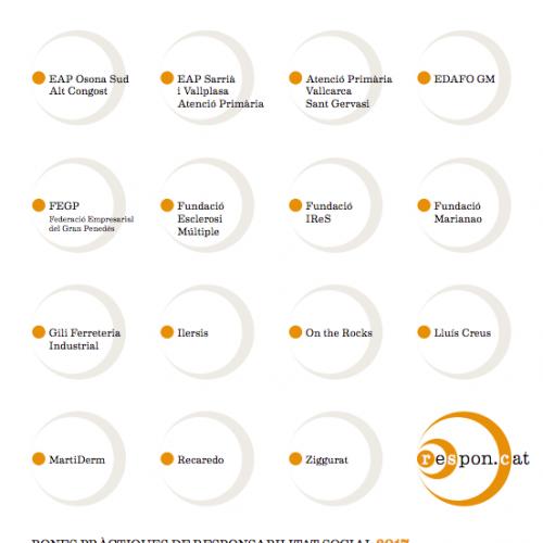 Fitxes de bones pràctiques de les empreses participants en l'RSE.Pime 2017