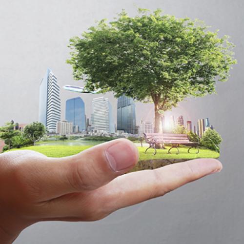 Calidad Pascual es compromet a reduir un 20% les seves emissions de CO2 el 2020