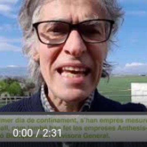 [Vídeo] Les empreses del Grup Clade afronten la crisi de la COVID-19 amb mesures especials