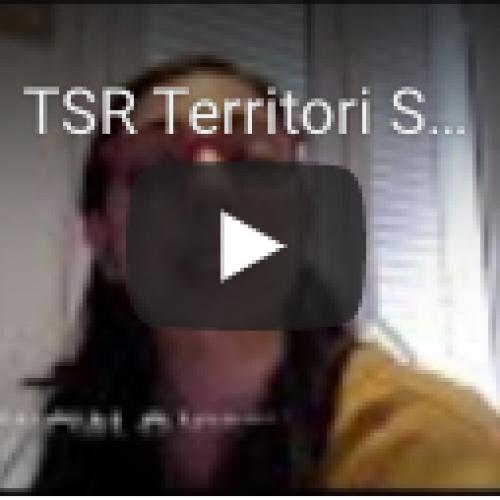 TSR Territori Socialment Responsable, tallers Empresa Positiva