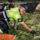 Viver Bell-lloc, jardineria, manipulats i envasats